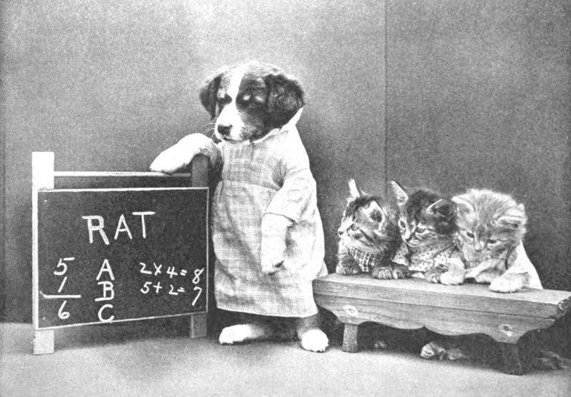 'Miss Kindeyes' kindergarten class. Uit het boek The little folks of animal land (1915).